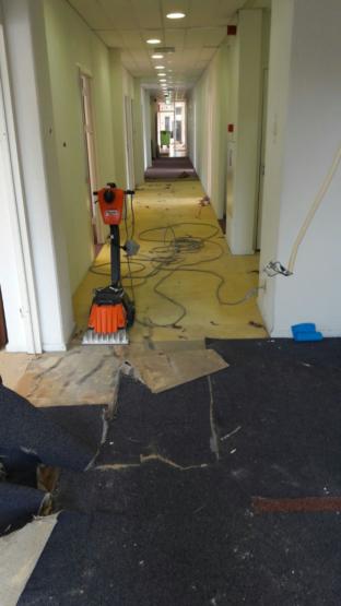 tapijt strippen kantoorpand